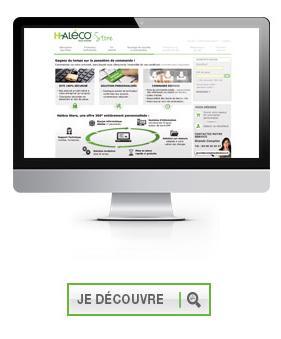 haleco_store_site